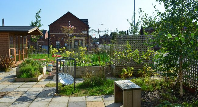 Community Garden at Windsor Womens Centre